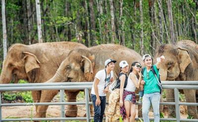Công Viên Bảo Tồn Động Vật Vinpearl Safari Phú Quốc