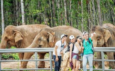 Bảng Giá Vé Safari Phú Quốc